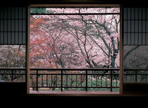 【京都】の行きつけの店と歩くところ。今のところ。