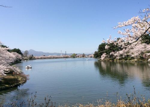 盛岡の国道4号線沿いにある高松の池で散策
