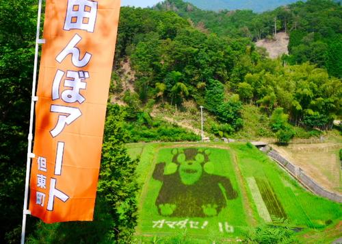 夏の但東町・田んぼアートとひまわり畑を巡る旅