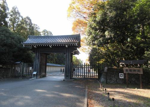 京都御所を四季折々の花々と