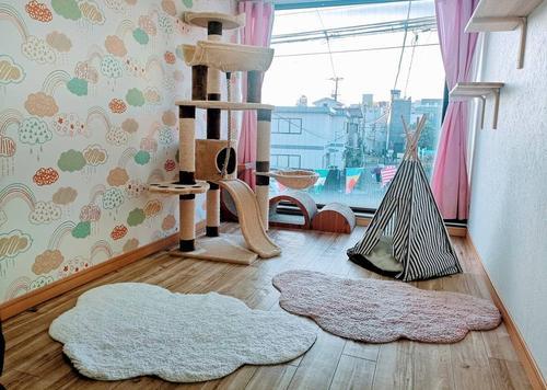 猫専用個室ペットホテル『ねこべや羽田空港店』