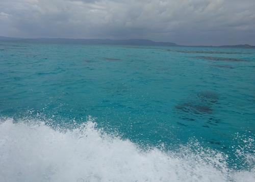 初めての八重山諸島~西表島・由布島・竹富島・小浜島編~
