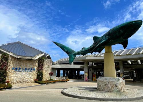 沖縄🌺水族館!北部の美ら海・南部のかりゆしを比較してみました🐬(周辺グルメ情報あり!)