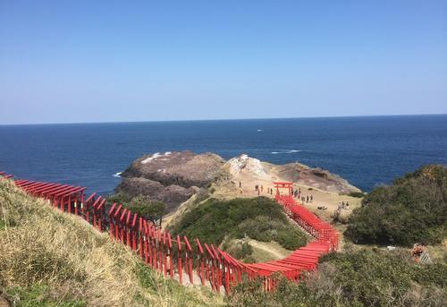 歴史と桜をめぐる旅〜山口・大分・熊本〜2016