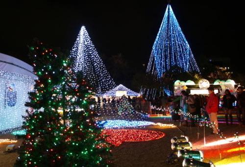 クリスマスまであと44日、シングルベルとさようなら~。IN 香川