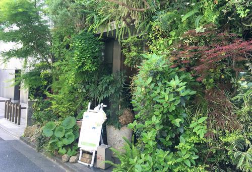 表参道でみつけた 緑とお花と竹林のある場所。