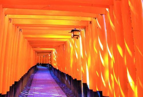 冬の京都旅行 (2泊3日)2日目