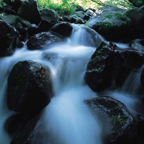 杜々の森名水公園