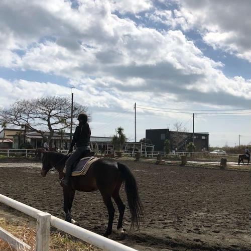 一の宮乗馬センター