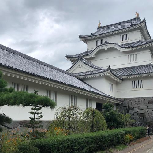 千葉県中央博物館 大多喜城分館