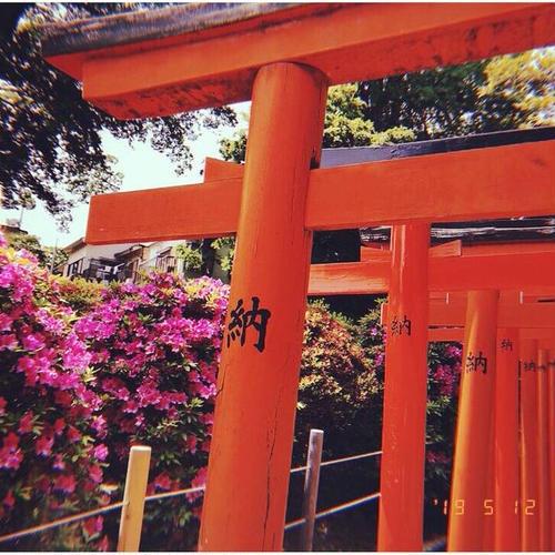 乙女稲荷神社