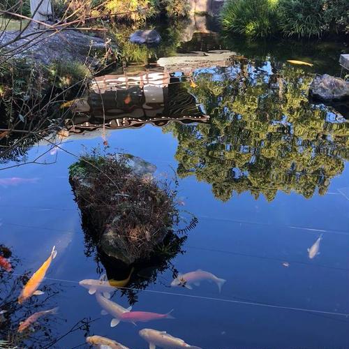 第6番札所 温泉山 瑠璃光院 安楽寺