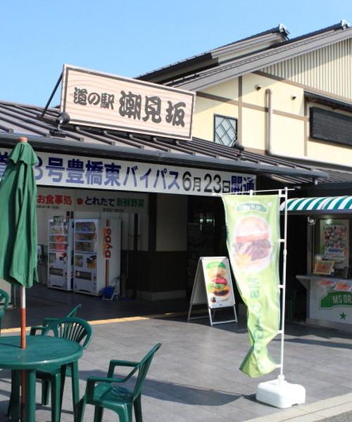 道の駅-静岡/愛知-1day