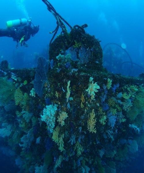 都心から日帰り可能な沈船、海底洞窟ダイブ⁈