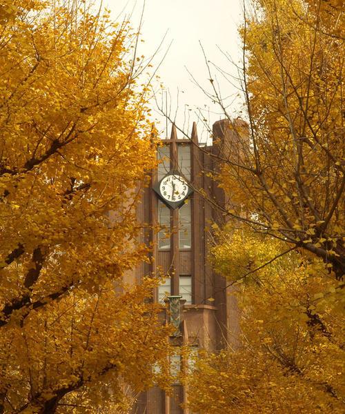 歴史、建築好きは必見の東京大学本郷キャンパス。近くにはおいしいものもたくさんあります!