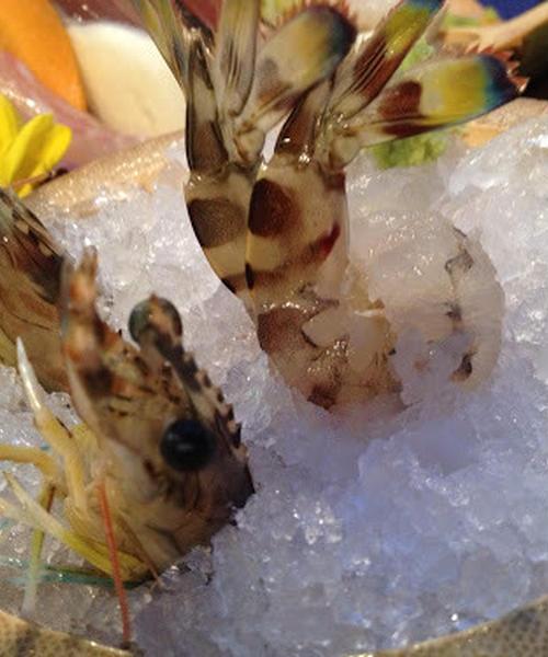 渋谷で美味しい海鮮が食べたい日もある