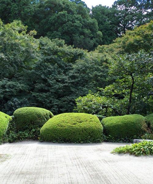 読書好きに!京都下鴨〜一乗寺の街歩き