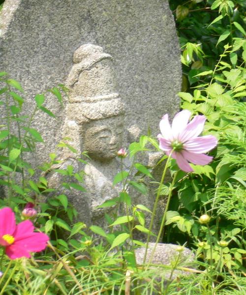 奈良 花の寺、般若寺~ならまち街歩き
