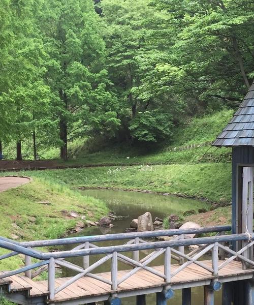 飯能市にあるあけぼの森公園が癒された^ ^