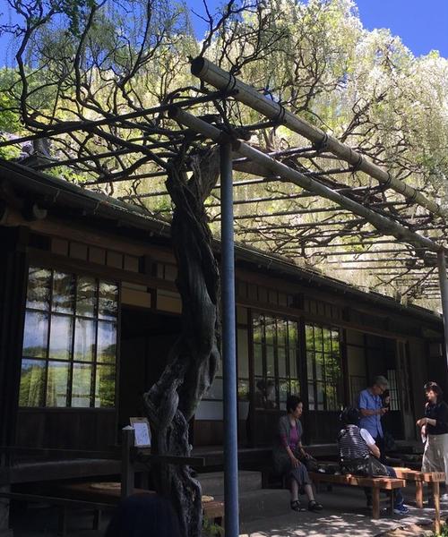 人混みを避けた鎌倉社寺巡り
