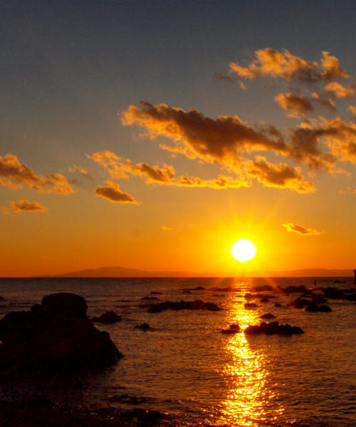 大切な人と日帰り三浦半島