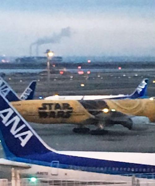 早朝便なら羽田空港まえのりでゆったり。