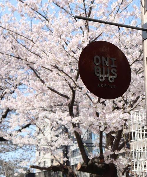 お花見のお供にはコーヒーを!☕️人気No.1桜スポット【中目黒】でお花見カフェ巡り🌸