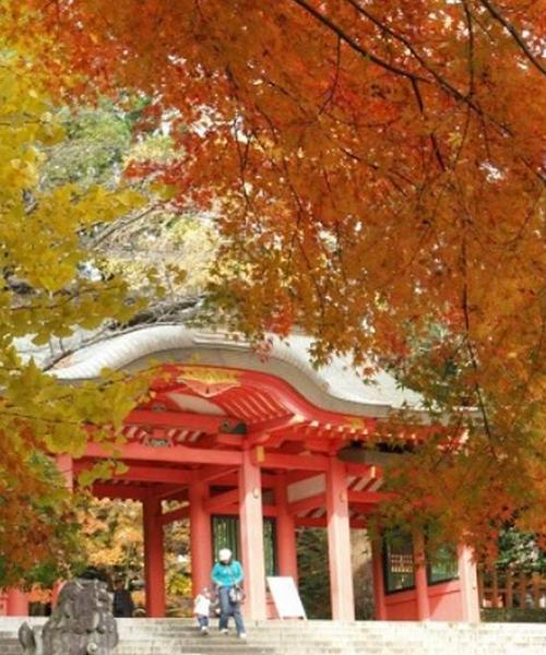 紅葉🍁香取神宮⛩と成田山新勝寺と食べ歩き🍡🍘