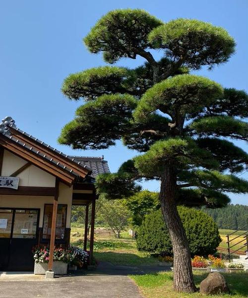 令和初秋🍂の旅(Ⅲ) 秋田 2日目、ドライブ