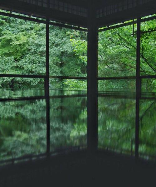 秋の京都🍁洛北ぶらり旅