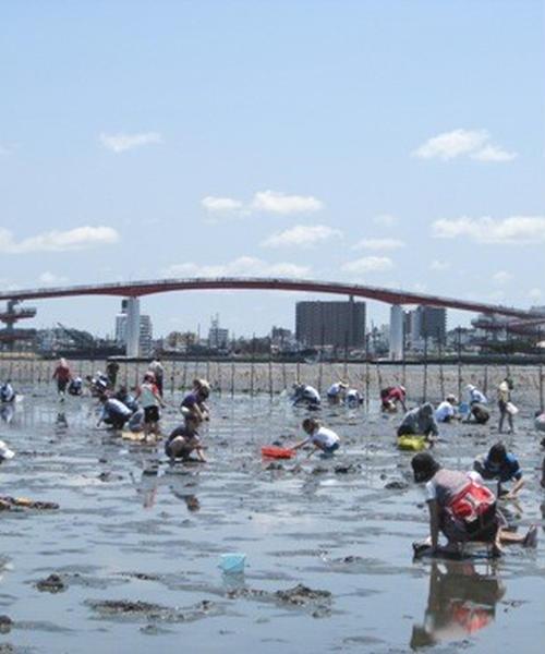 5月~6月限定!東京から潮干狩り