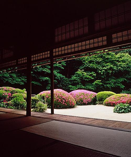 のんびり京都の静かな名所巡り