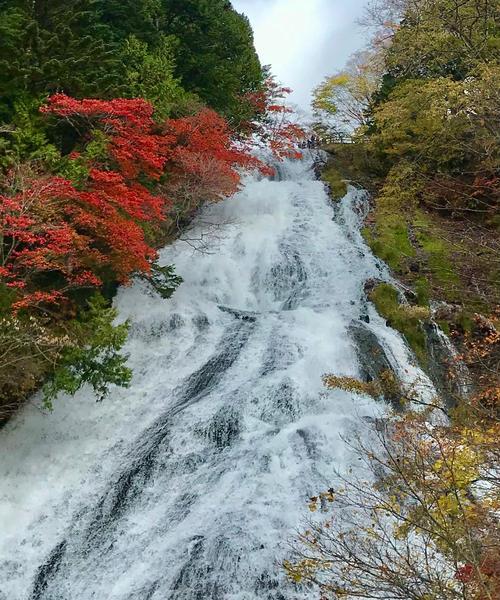 奥日光、紅葉狩り🍁『湯ノ湖編』