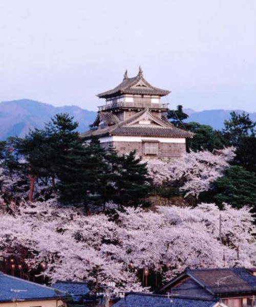 現存12天守の丸岡城からの福井桜三昧
