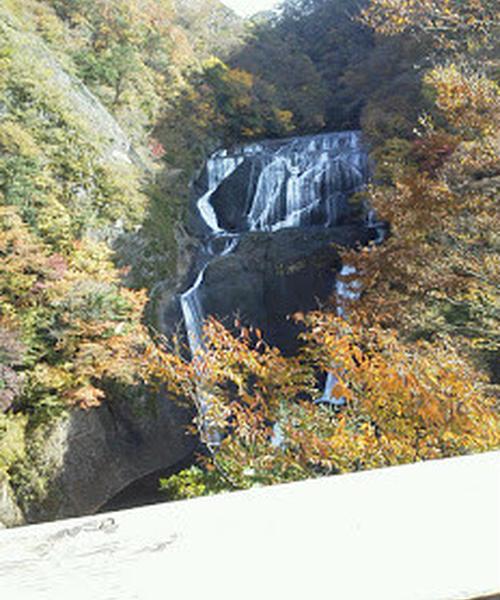秋のバス旅行 袋田の滝 大子温泉やみぞ リンゴ狩り