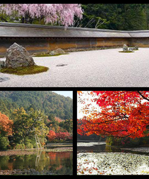 日本の様式美を探求しよう!