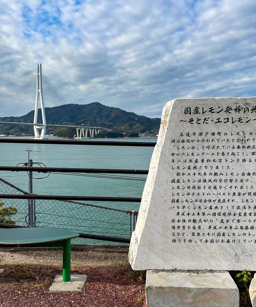 瀬戸内のアートと自然を満喫!生口島・日帰りサイクリング