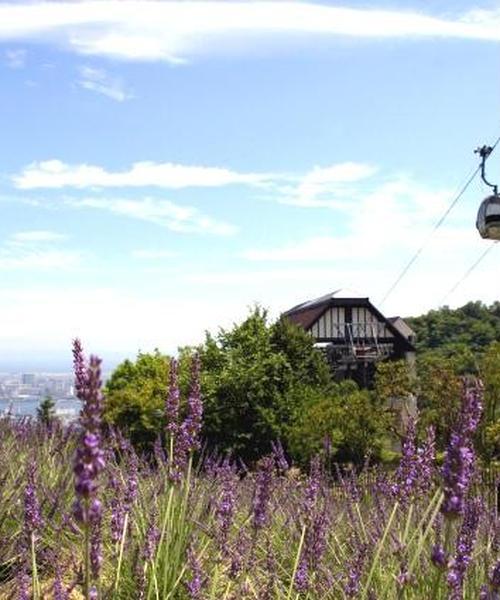 ハーブの香りに包まれて♪神戸布引ハーブ園周辺をお散歩