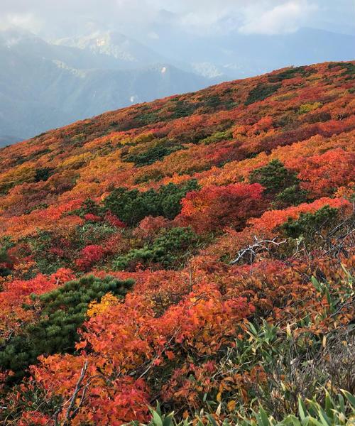 【宮城】シーズン到来!紅葉の名所🍁栗駒山を訪れる1泊2日