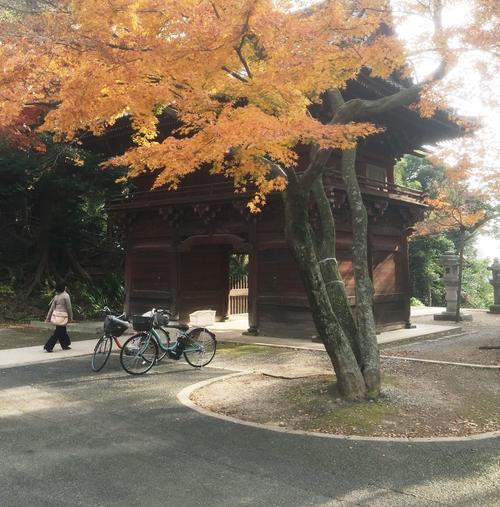 市川駅から真間山まで歴史を感じるお散歩