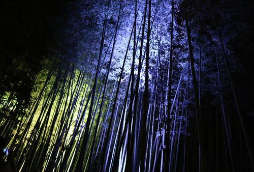 星のや京都で贅沢気分に浸り、美味しいものに出会う嵐山旅♡