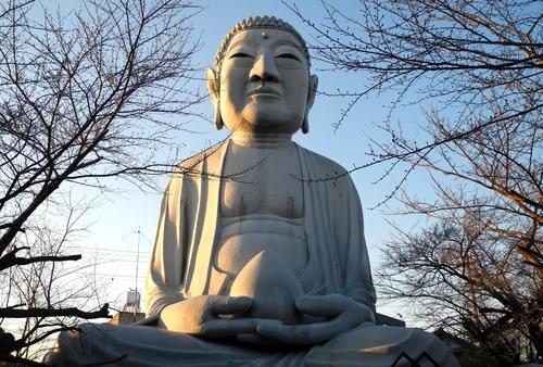 名古屋とその周辺に存在する「大仏様」だけを巡る旅