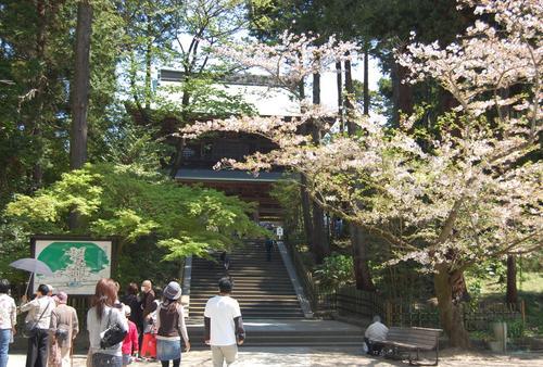 渋さが魅力。いざ、定番だけど外さない鎌倉へ。
