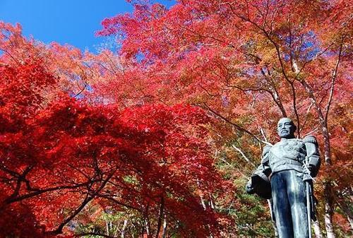 東郷公園と子の権現