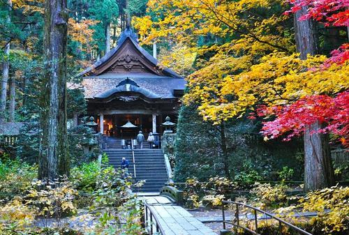秋の駒ヶ根高原で紅葉を満喫!