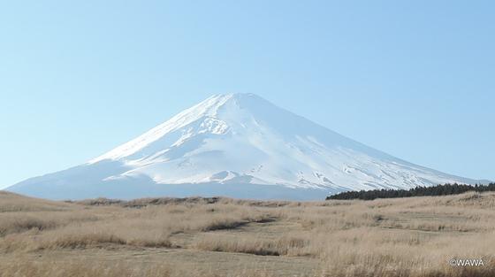 東富士演習場付近から春(3月)の富士山