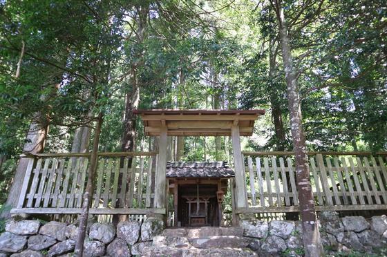鎌倉神社と木漏れ日