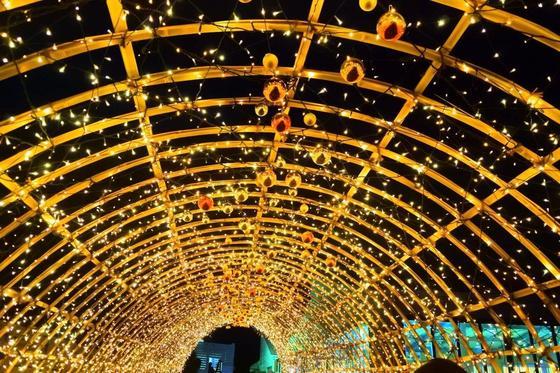 光のトンネル♡