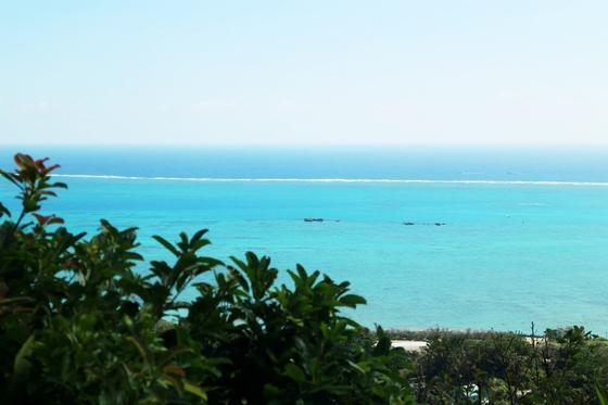 席からは真っ青な海