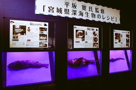 深海生物のレシピ?!